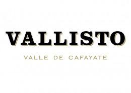 Marca-Vallisto-Imp-square